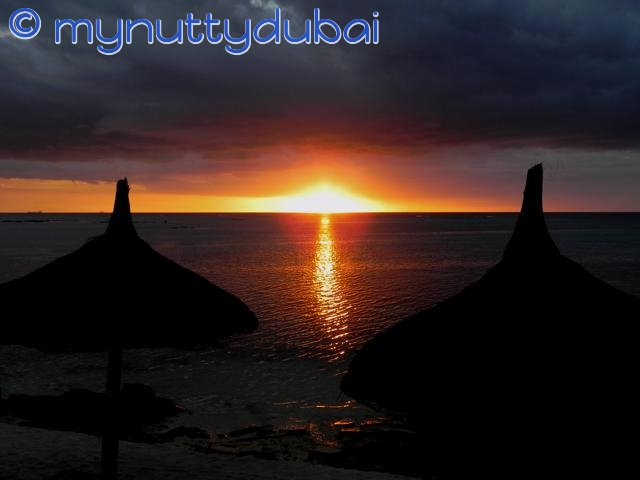 The sun afloat on the horizon