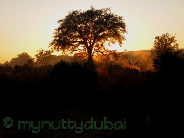 Sunrise in Zimbabwe, 2010