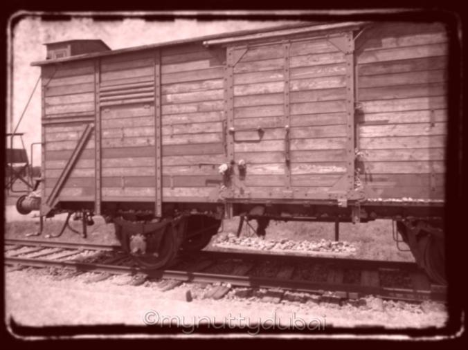 Train at Auschwitz