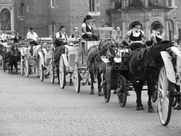 Horse carriages in Krakow