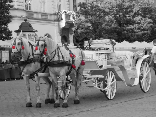 Singled-out horse carriage, Krakow