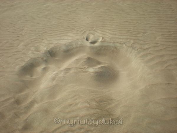 Random marks on the beach