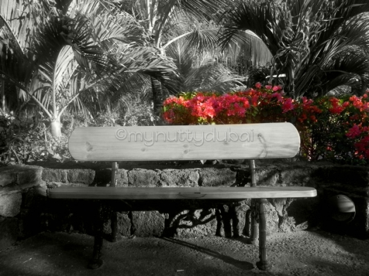 Wooden Bench in Mauritius
