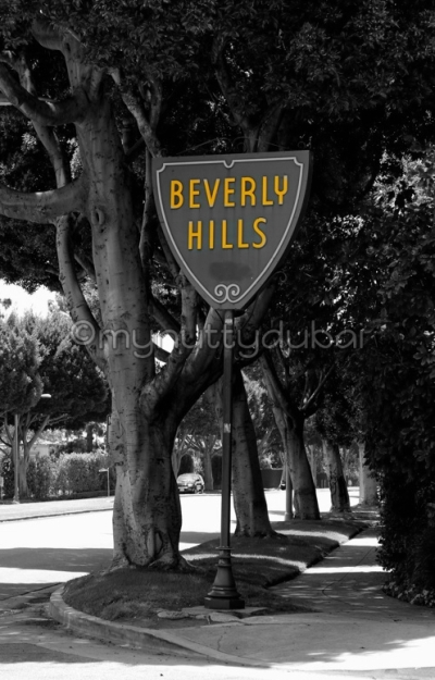 One of the most famous signs in the world... in Beverly Hills ;)