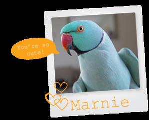 marnie_2