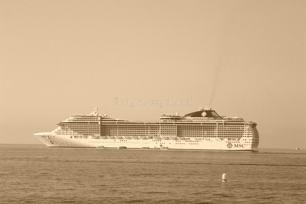 MSC Fantasia, as seen from shore while on an excursion