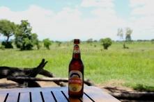 kilimanjaro beer