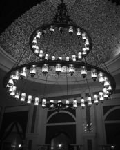Love this chandelier!