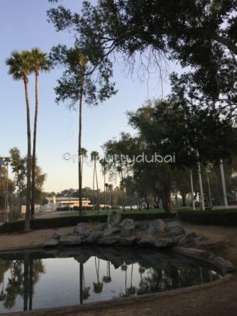Random park picture